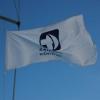 msm-flag-flying-high