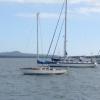 solo-us-yachtsmans-8-m-boat-alexandra